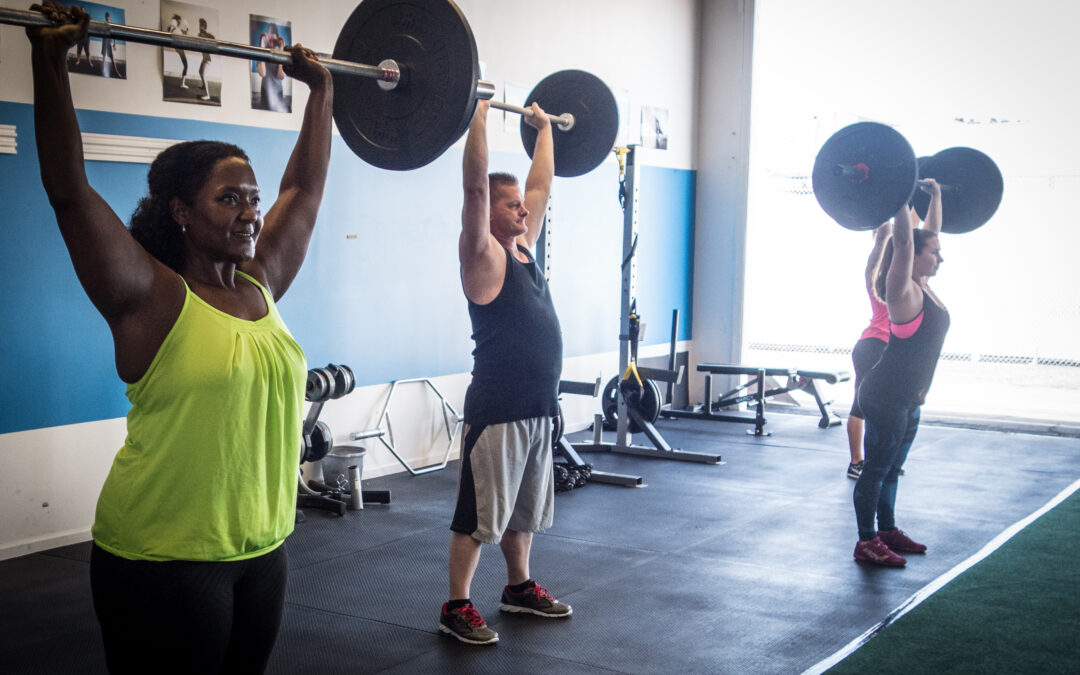 Trainer Tip – Be Predicatable
